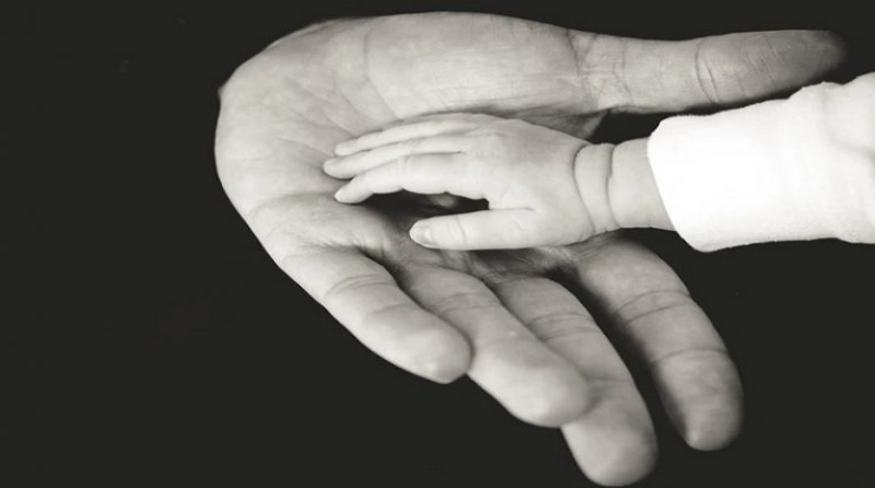 Establishing Parentage In Child Support Claims